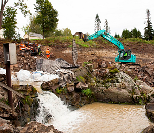 Removing 27 dams has opened up 600km of river for endangered migratory fish in Finland