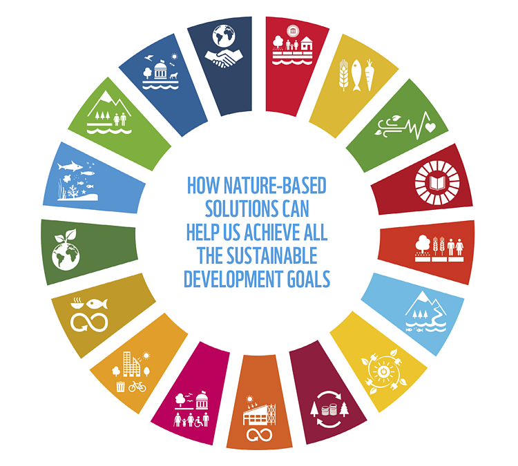 Nature and the SDGs