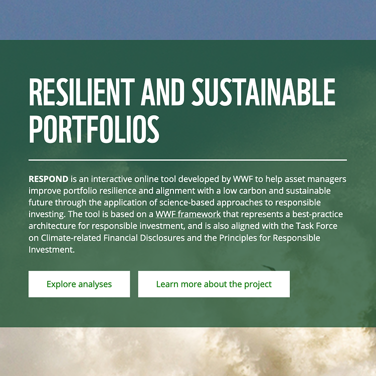 New WWF study challenges asset managers to respond to call for greater leadership in responsible investment