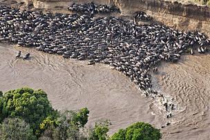 Healthy Mara river is critical to Kenya and Tanzania