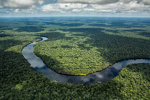 Aerial view of Salonga National Park and the Luilaka river, just before landing at Monkoto, Democratic Republic of the Congo.