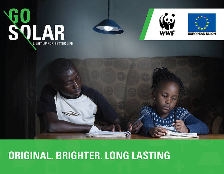 News article on the milestones achieved by the WWF Solar Project