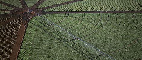 farm sector definition