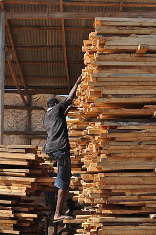 Regional timber trade forum set for Zanzibar