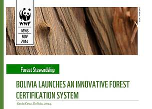 BOLIVIA LAUNCHES AN INNOVATIVE FOREST CERTIFICATION SYSTEM