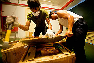 Workers at the customs department in Bangkok's Suvarnabhumi Airport open a box of seized illegal elephant Ivory.