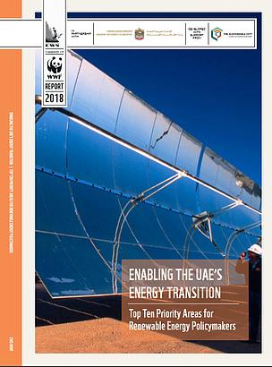 Enabling the UAE's Energy Transition | WWF