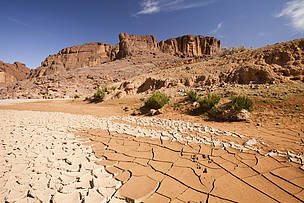 A dried up river bed in Morocco, North Africa, where rainfall has reduced by 75% as a result of climate change.
