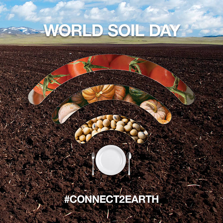 World Soil Day Interview with WWF-CEE Board Member Dr. Ladislav Miko