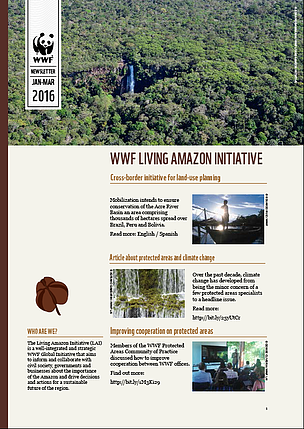 January-March 2016 Newsletter - Living Amazon Initiative
