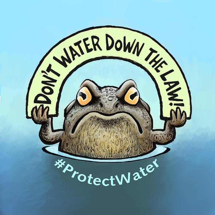 5500+ Scientists call on European Commission to Defend the EU Water Law