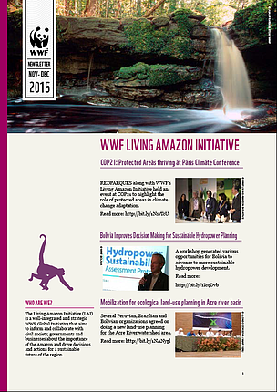 November-December 2015 Newsletter - Living Amazon Initiative