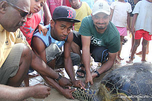 Hamza Malik of Pakistan turtle tagging on Yadua Islands during his communications assignment with WWF Pacific