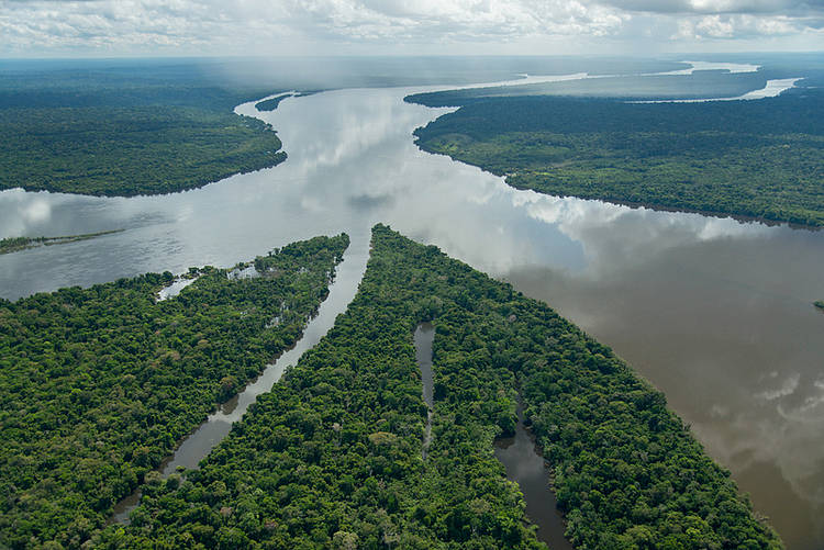 Where does the mercury poisoning the Amazon come from?